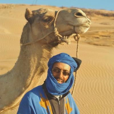Specialist of camel's trekking